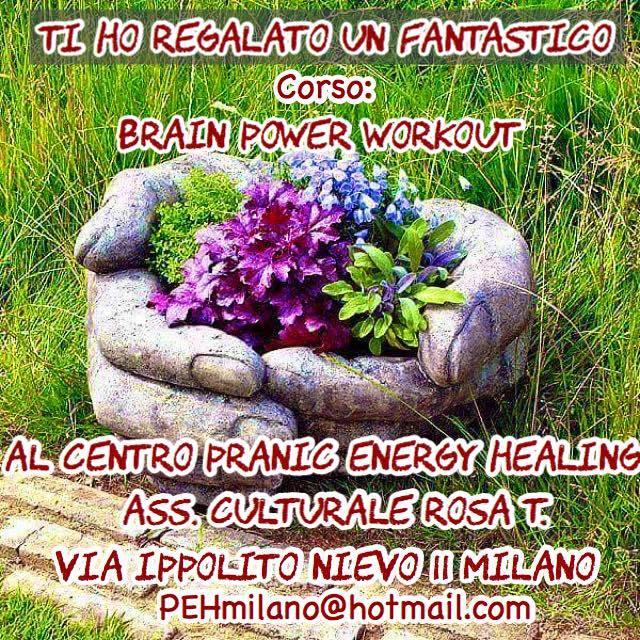 peh-brain_n